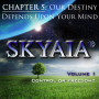 Skyaia®: Control or Freedom (Chapter 5)